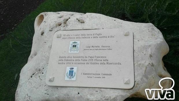 Terlizzi, un ulivo speciale in memoria di Mons. Luigi Martella